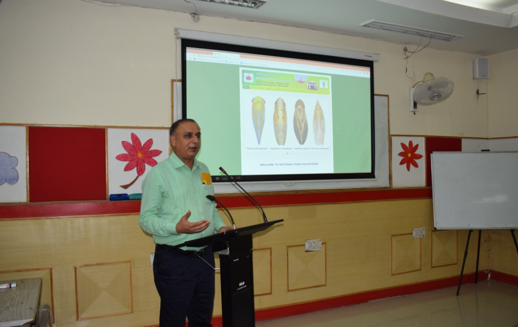 Dr. A.K.Singh, Director, IARI launched Website of National Pusa Collection at Division of Entomology