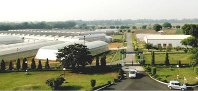 Centre for Protected Cultivation Technology (CPCT)