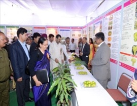 Hon'ble MoS for Agriculture and Farmers Welfare Dr Sanjeev Balyanvisited the Divisonal Thematic Pandal during 2015 Pusa Krishi Mela