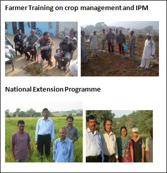 Text Box: Farmer Training on  crop management and IPM National Extension Programme