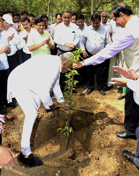 Plantation being done by Hon'ble MoS Agriculture and Farmers Welfare on World Environment Day at IARI